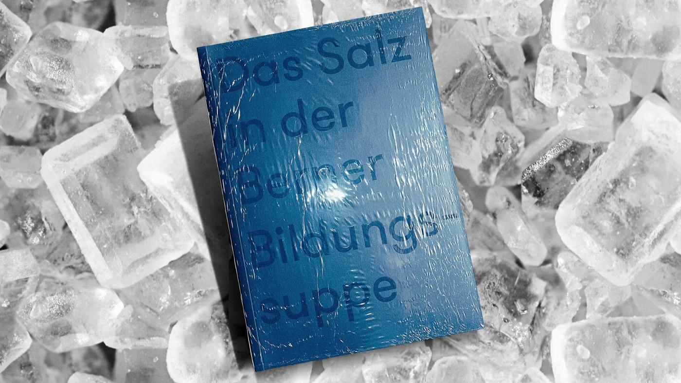 NMS Buch